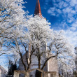 Weathered catholic church on a snowy trees — Foto Stock