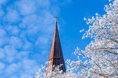White tree and church in winter — Stock Photo