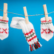 Scarf and pair of gloves drying — Stock Photo #27168757