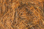 Round bale of straw background — Stock Photo