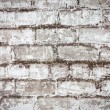 Brick white dirty wall background — 图库照片 #29653873