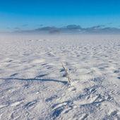 冬季多雾景观 — 图库照片