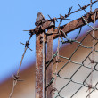 Stock Photo: Rusty old fences of barb wire