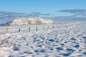 Barbed wire fence winter landscape — Stock Photo