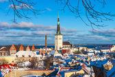 Tallinn winter city panoramic landscape — Stock Photo