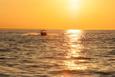 Sunset at sea in summer — Stock Photo