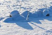 Stones on snow meadow — Foto Stock