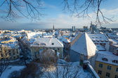 Tallinn at winter — Foto Stock