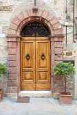 Old elegant door in Italy — Stock Photo