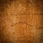 Plaster wall, damaged, grunge, dirty — Stock Photo #43988765