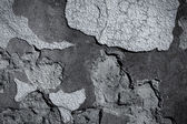 Dark edged gray plaster background — Stock Photo