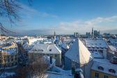 Tallinn at winter — Stock Photo