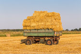 Straw hay bales on a trailer — Stock Photo