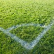 Beautiful green grass of the football field. — Stock Photo