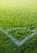 Prachtige groene gras van het voetbalveld. — Stockfoto