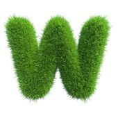 Grass letter W isolated on white background — Stock Photo
