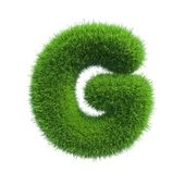Grass letter G isolated on white background — Stock Photo