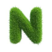 Grass letter N isolated on white background — Stock Photo