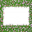 Frame of flowers and green grass — Stock Photo