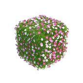 Cube with flowers growing on it — Stock Photo
