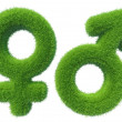 Gender symbols grass — Stock Photo