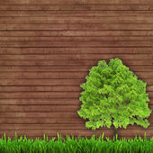 Green tree and fresh grass on a wooden background — Stock Photo