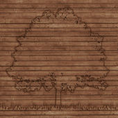 Contour tree on old wooden planks background — Stock Photo