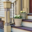 Door Steps with Flowerpots - Stock Photo