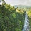 Stock Photo: Quechee Gorge Vermont