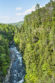 Quechee River & Gorge — Stock Photo