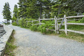 Waterside Path at Bar Harbor Maine — Stock Photo