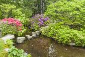 Stepping Stones to Cross a Garden Stream — Stock Photo