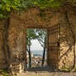 Gate In SGimignano — Stock Photo #13400504