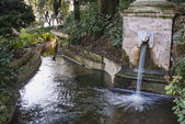 Stream at Bardini Gardens — Stock Photo