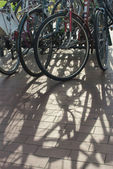 Bicycles in Parking Area — Stock Photo