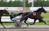 Horserace — Stock Photo