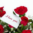 Red Roses with Text — Stock Photo