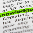 Stock Photo: Word Knowledge in Dictionary