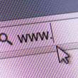 WWW Text in Address Bar — Stock Photo #30480271