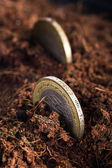 Coins in Soil — Stock Photo