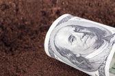Dollar Banknote on Soil — Foto de Stock