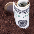 Money in Soil — Stock Photo #34634197