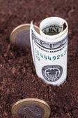 Money in Soil — Photo