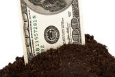 Pile of Soil and Dollar Bill — Stock Photo