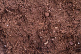 Soil Background — 图库照片