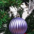 Christmas Ball — Stock Photo #37166491