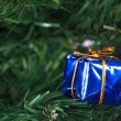 Christmas Tree with Gift Box — Stock Photo #37167087