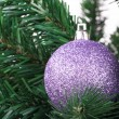 Christmas Tree with Ornament — Stock Photo