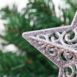Christmas Tree with Star Ornament — Stock Photo #37167239