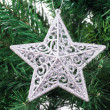 Christmas Tree with Star Ornament — Stock Photo